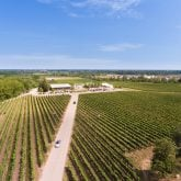 ravine-vineyard-views-2
