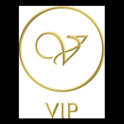 vip-ontariotours-logo